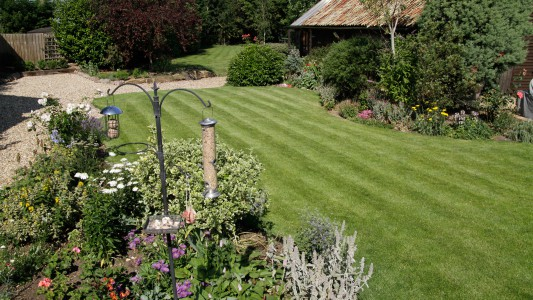 Beautifully mown lawn