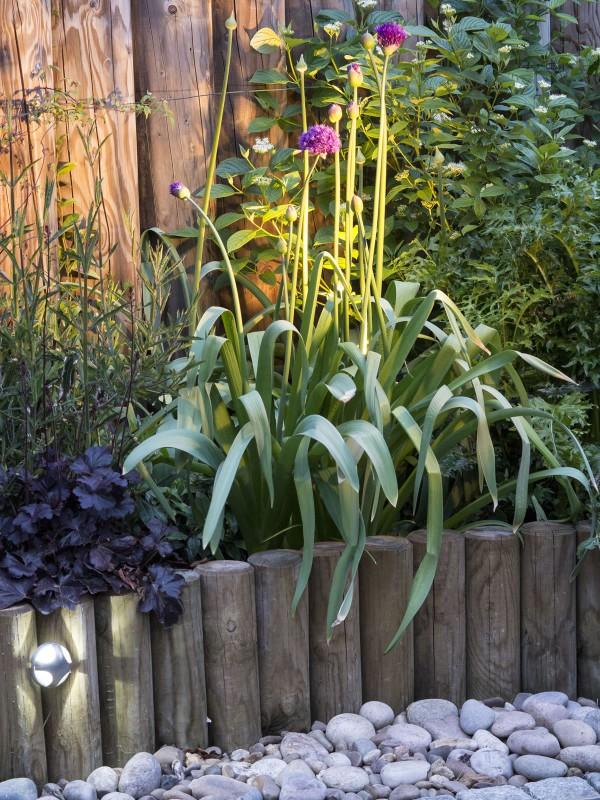 Garden lighting planting