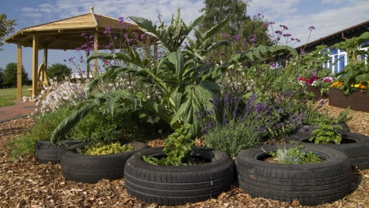 School LandscapingNovel Beds and Borders for Schools